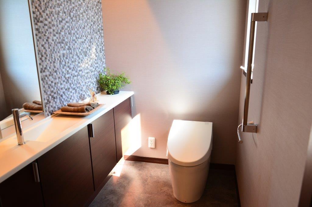 風水的に良い観葉植物おすすめトイレ・寝室・玄関・テレビ横の画像03