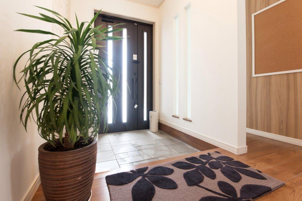 風水的に良い観葉植物おすすめトイレ・寝室・玄関・テレビ横の画像05